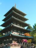 Japanese Shrine - Japan
