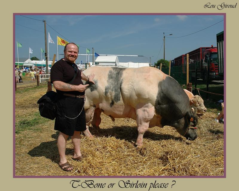 Belgian Blue Bull - October 01-04