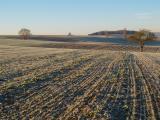 Frosty Morn 3