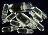 Dash Bulbs.jpg