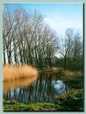 Another river somewhere in Holland