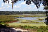 5976 - The Marsh