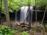 Big Laurel Falls 4