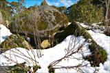 Mount Donna-Buang