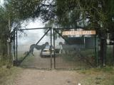 Cheetah Gate to Nairobi National Park, early morning. You can't get an entrance ticket here.