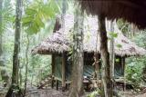 Campsite deep in the Manu Jungle