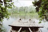 The Manu Biosphere Reserve, Peru