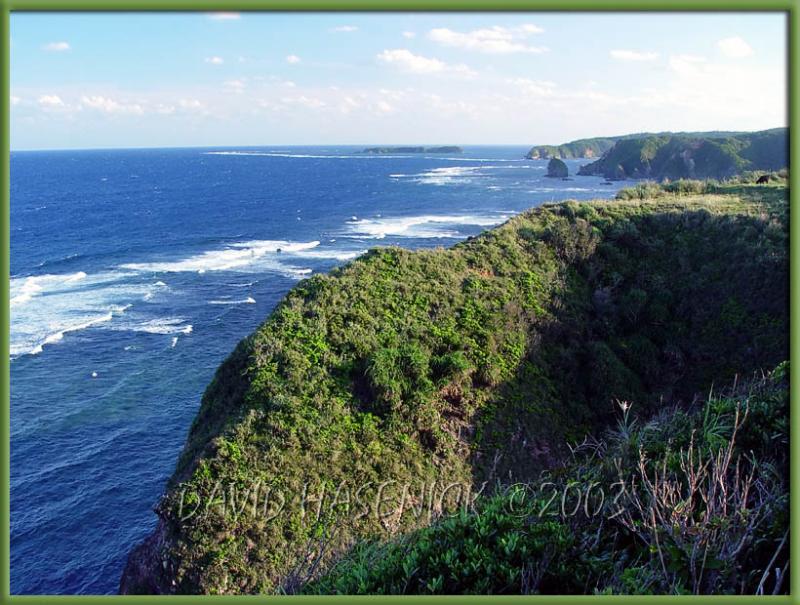 Northeast Coast