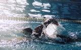 Swimming .jpg