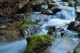 Partington Creek