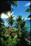 Fregate Island view