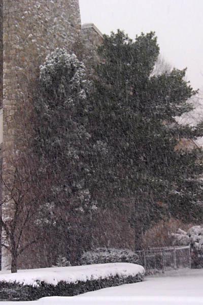 snow_03c.jpg