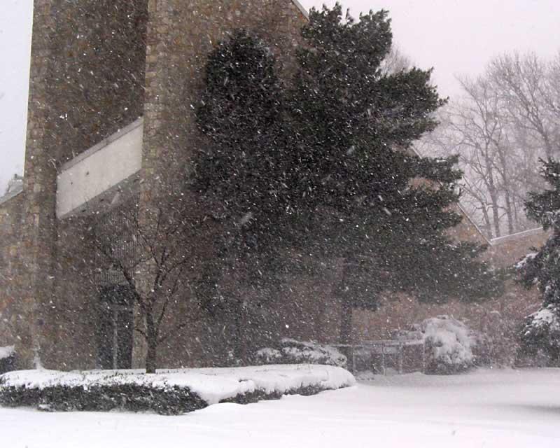 snow_03f.jpg