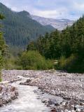 Cable Car, Kautz Creek, Mt. Rainier N.P.