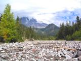 Kautz Creek, Mt. Rainier N.P.