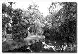 River at Lorne