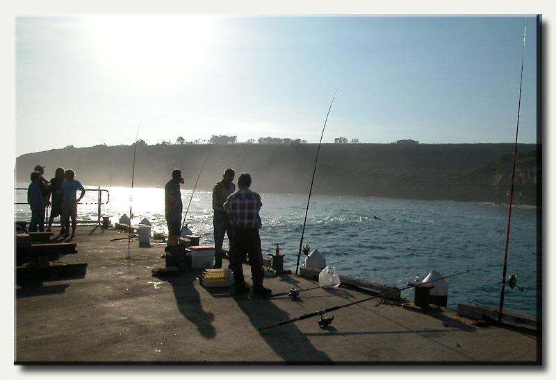 Fishing at Campbell Bay