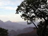 Canyon at Dawn
