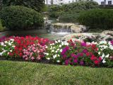 Floral Display in Fort Lauderdale