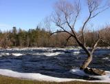 Blakeney Rapids 4