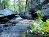 lewis_creek