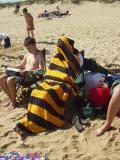 Cape Cod 2003