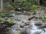 North Cascades N.P. - Thunder Creek