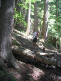 Don running down to Buck Creek
