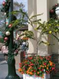 Floral and Holiday Decor