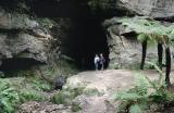 Glow Worm Tunnel 1992