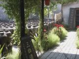 Album 9: Wuzhen, an ancient canal town