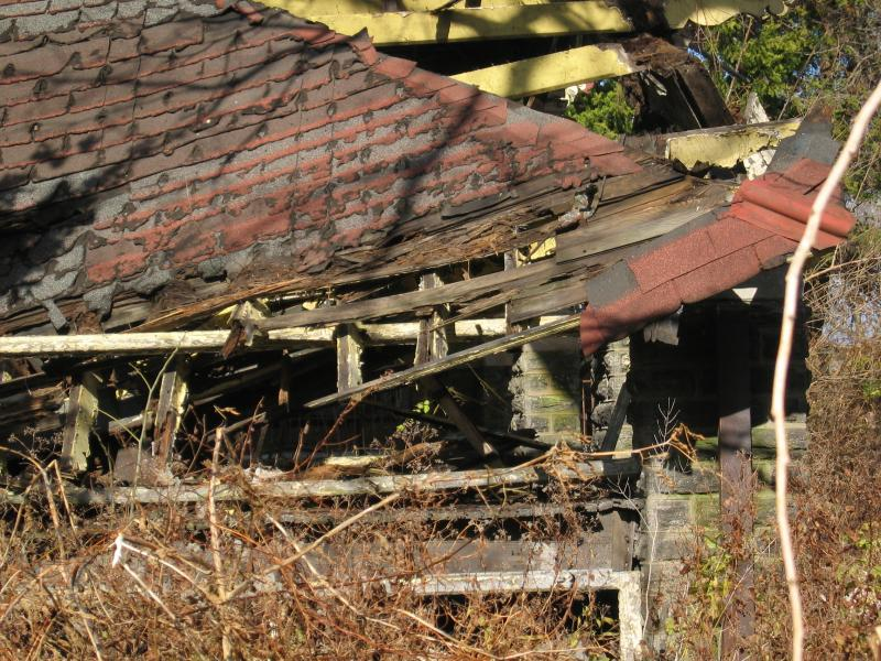 Porch roof with season-ending vegetation