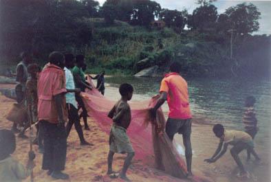 Bringing the fishing nets in - Nkhata Bay.jpg