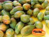 Papayas, rainbow variety