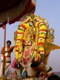 Srinivasar Garuda Vahanam