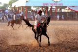Horsemanship web.jpg