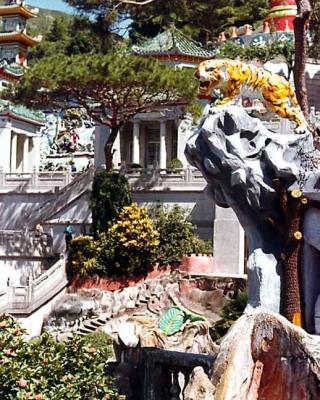 Tiger Balm Gdns Hong Kong