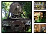 Don Khon train