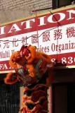 Brooklyn Chinese Newyear Parade