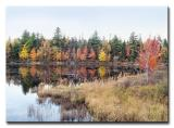 Autumn Colors of New Hampshire