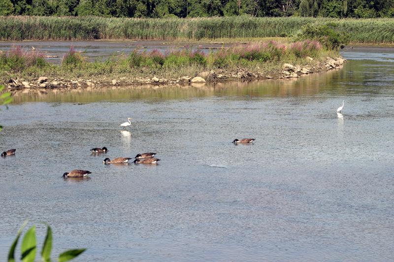 Mystic River1.jpg