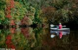 early fall colors on the upper Mattaponi