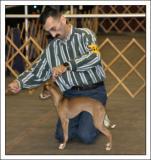 Lehigh Valley Dog Show