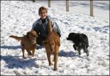 Hunterdon County Off-Leash Dog Area