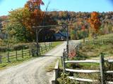 Nettie's  Driveway