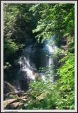 Anna Ruby Falls - Right Tight - 1218 copy.jpg