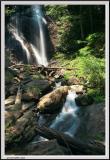 Anna Ruby Falls - Right Tight - 1249 copy.jpg