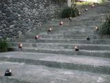 Lamps on steps of the Chedi Hotel, Ubud