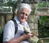 Iguana with tourist