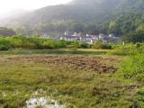 Lai-chi-wo village.jpg